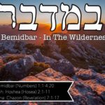 "1. BeMidbar במדבר 150x150 - Welcome to my ""set apart"" blog & more."