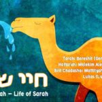 "5. Chayei Sarah חיי שרה 150x150 - Welcome to my ""set apart"" blog & more."
