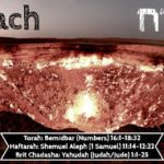 "5. Korach קורח 150x150 - Welcome to my ""set apart"" blog & more."