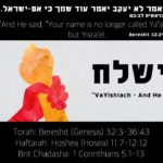 "8. VaYishlach וישלח 150x150 - Welcome to my ""set apart"" blog & more."