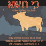 "9. Ki Tissa כי תשא 150x150 - Welcome to my ""set apart"" blog & more."