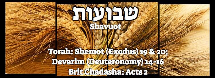 "Shavuot שבועות - Welcome to my ""set apart"" blog & more."